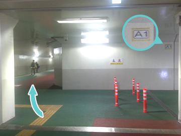 自転車駐車場・地下道の道路(A1出口付近)